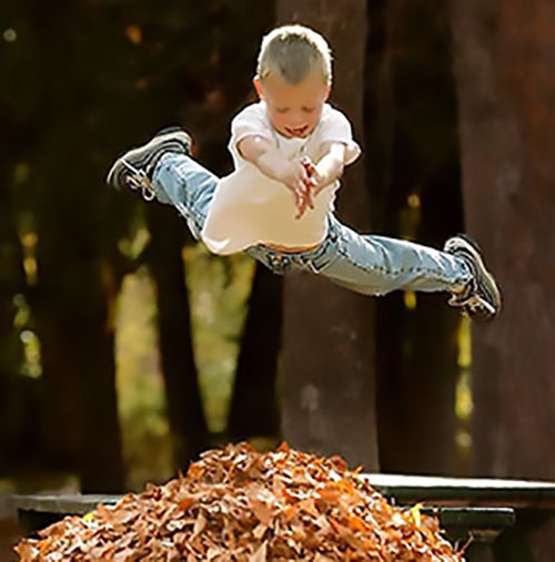 Jump Into Fall!  Register for 2019 Fall Programs!